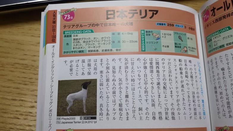 keru-encyklopedia